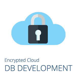 Encrypted Cloud Database Development